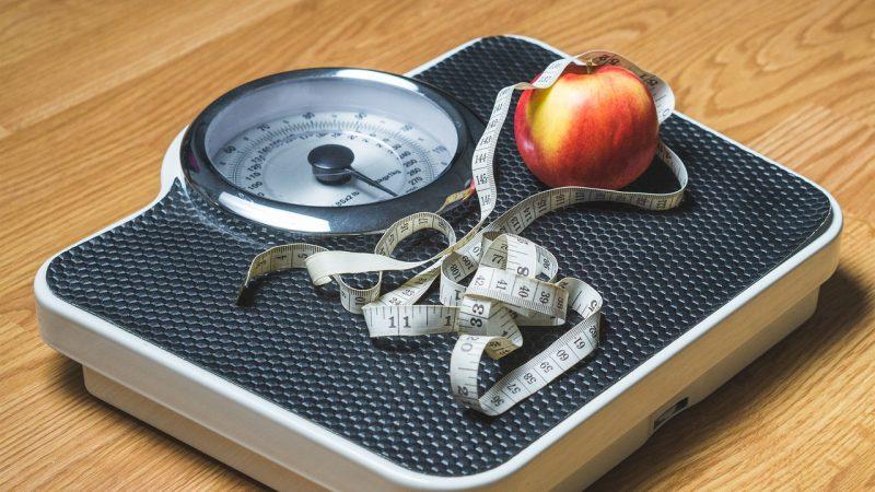 Nutrition/Dietetics (BS)